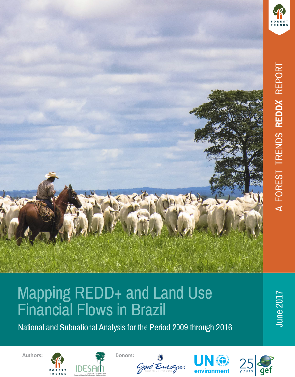 (English) Mapping REDD+ and Land Use Financial Flows in Brazil