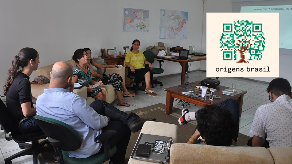 "Meeting of the Territorial Committee of ""Origens Brasil"" is held at Idesam"