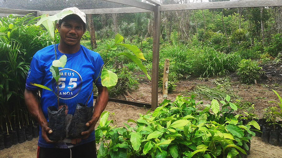 Idesam's Carbon Neutral Program plants over 3.4 thousand seedlings in Uatumã reserve