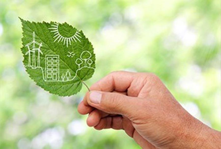 Idesam lança Concurso e seleciona projetos ambientais no AM