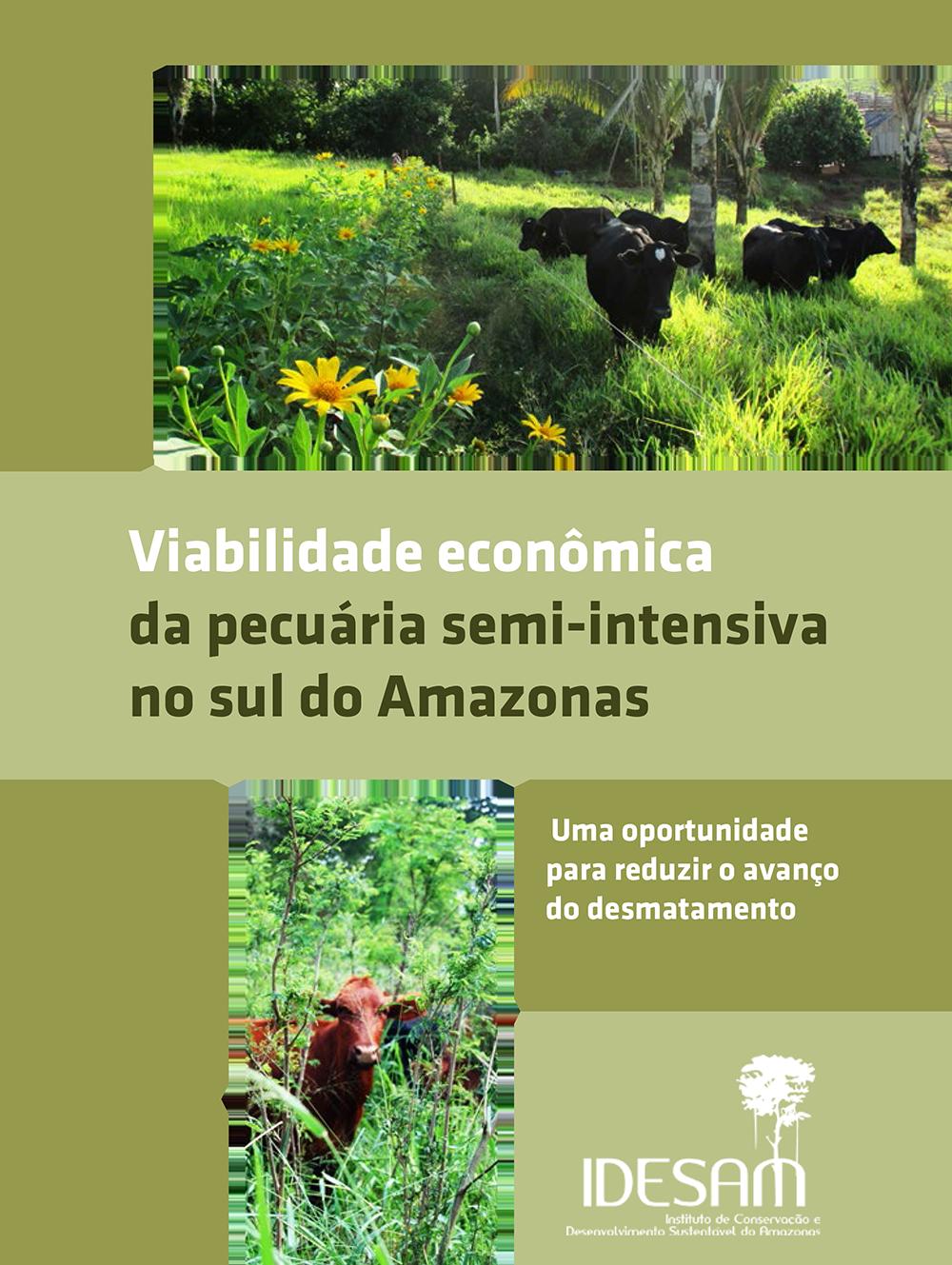 Viabilidade econômica da pecuária semi-intensiva no sul do Amazonas
